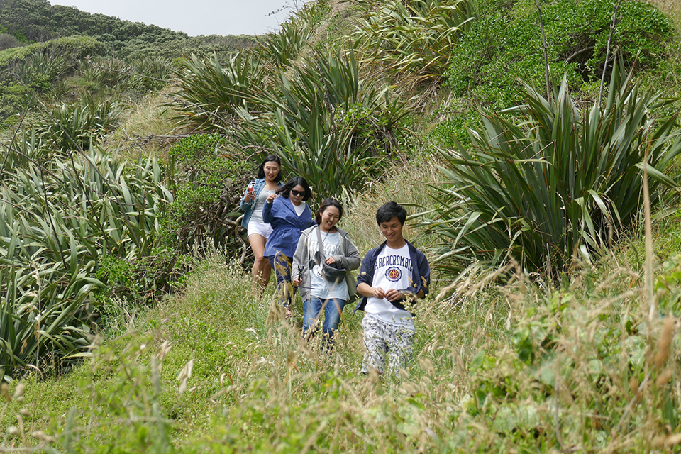 On the track to Karekare Beach, Karekare