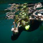 Snorkelling, Goat Island